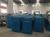 100g农村饮水消毒设备/100g次氯酸钠发生器