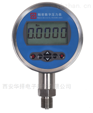 HZ-100数字压力表