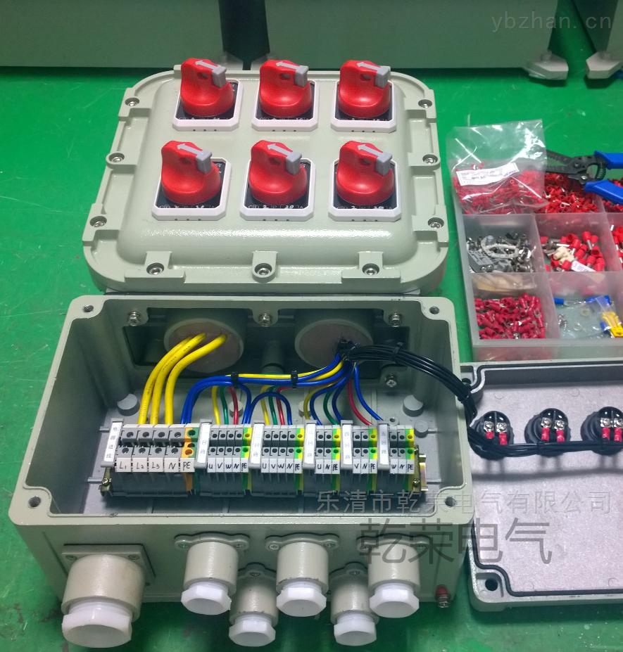 控制电机防爆配电箱生产厂家