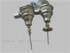 WZPB-241M一体化防爆热电阻