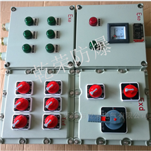 BXM(D)51客户推荐IIC等级防爆照明配电箱
