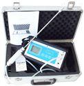 KP826-B内置泵多合一气体检测仪