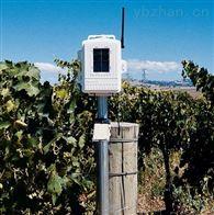 6345美国Davis 戴维斯 无线叶面和土壤温湿度台站 农业自动气象站