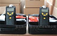 泵吸式 VOC检测仪 PGM-7340