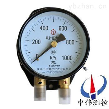 YZS-102-双针双管压力表