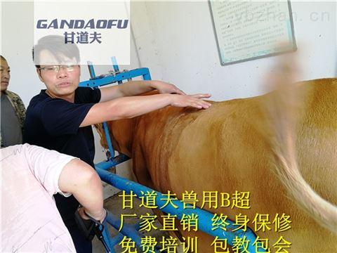 进口牛羊B超背膘眼肌测定仪新报价价格