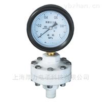 YTP-100S系列防腐全塑隔膜压力表