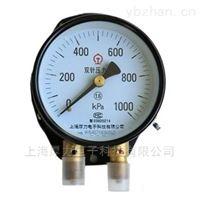 YZS-102系列双针压力表