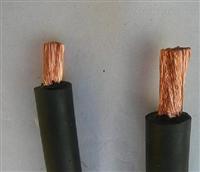 变频器电缆BPYJVP