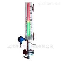 HL-ZDS系列磁悬光电双色液位计