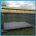 養豬場專用稱活畜帶1米高圍欄2噸電子地磅秤