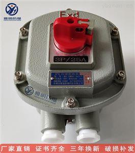 下进线BDZ52-20A/4P 60A/4P防爆断路器