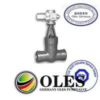 德国奥莱斯OLES进口高温高压闸阀