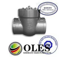 德國奧萊斯OLES進口高溫止回閥