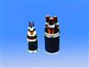 低壓電力電纜VV-1000V-3×4+1×2.5