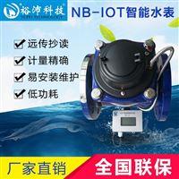 大口径NB-IOT物联网水表冷水表智能水表