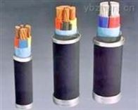 DDNH-YJV22-2*25DDNH-YJV22-0.6/1KV-2*25耐火低烟低卤电缆型号