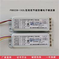 FBDZ28-1X2L型高效节能单脚防爆电子镇流器