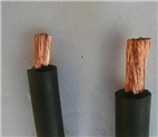 BPYJV电缆BPYJVP变频电力电缆厂家