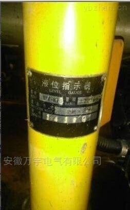 油位计 浸入式油箱油位指示器