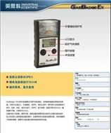 GB90英思科擴散式天然氣檢測報警儀