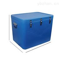 RS-BWX-85-*药品保温箱冷藏箱车载保温带远程温度记录