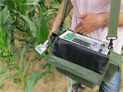 3051D植物光合作用测定仪