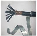 屏蔽鎧裝控制電纜ZR-KVVP2-22