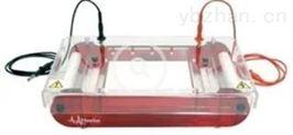 現代型水平電泳儀