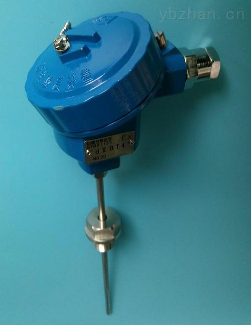 铠装热电阻,铠装铂电阻WZPK-123