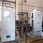 10公斤二氧化氯发生器污水厂消毒设备厂家