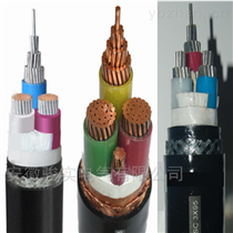 BPF46F46RP-0.6/1KV-3*95+3*16变频电缆