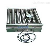DT工业流水线滚筒输送电子秤