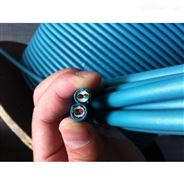 西門子6ES7 972-0CB20-0XA0編程電纜