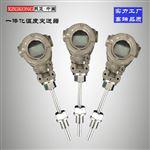 WZPD-330一体化不锈钢温度变送器