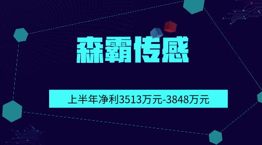 森霸传感2019年上半年净利3513万元-3848万元