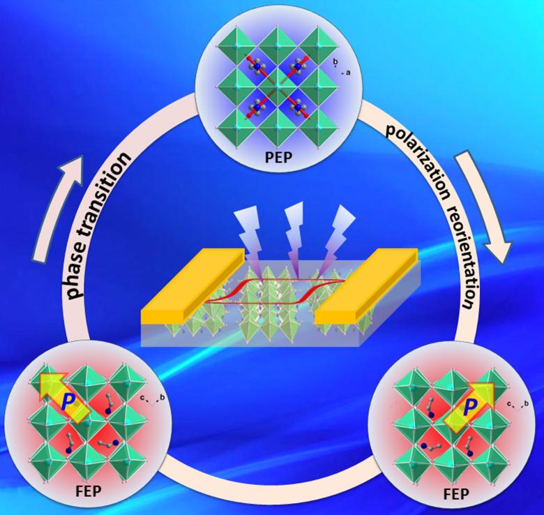 福建物構所有機無機雜化雙軸鐵電光伏材料研究獲新進展