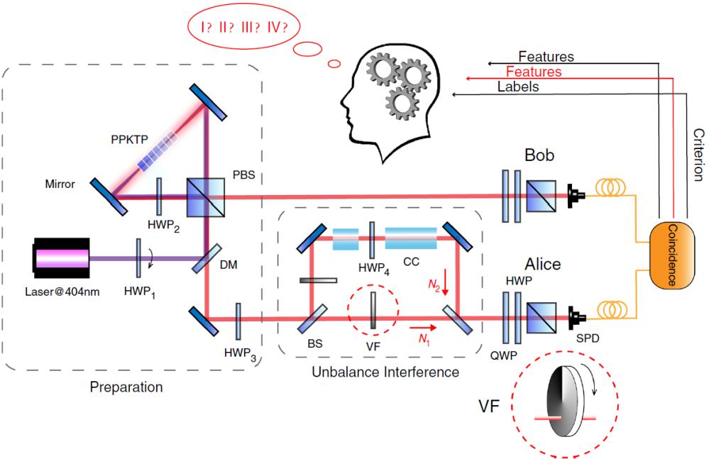 科學家利用人工智能實現多重非經典關聯的同時分類