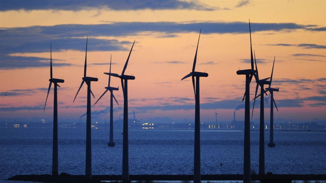2019年丹麥風電創新紀錄 占近半電力供應