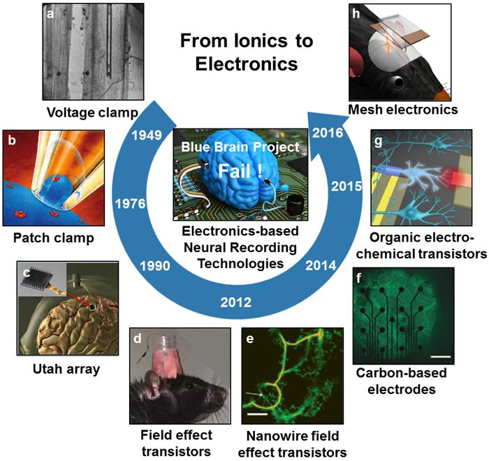 理化所提出從離子學到量子離子學的生物信息轉化技術
